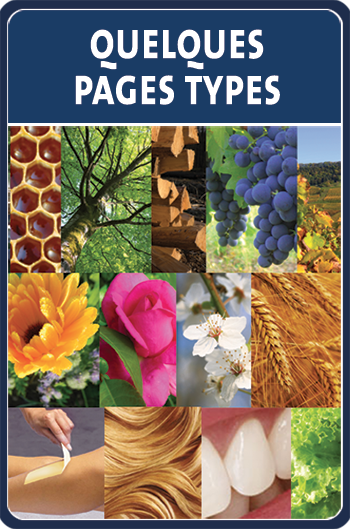 pages-types