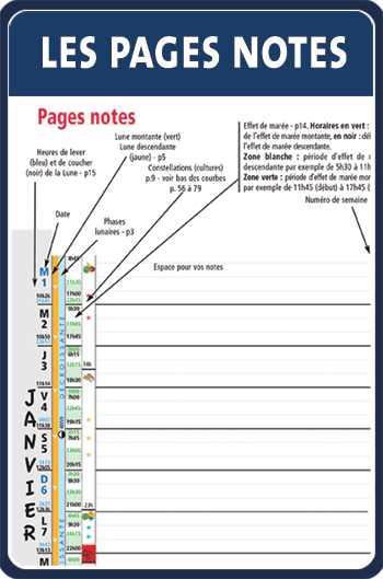 pagesnotes